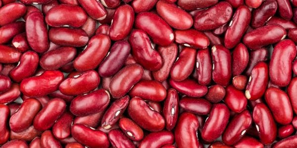 Kidney beans picture